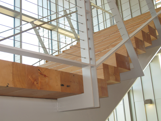douglas-fir-stairs_cptc-project_3